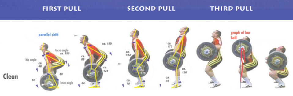 Power Clean Exercise Guide and Video |Power Clean Phases